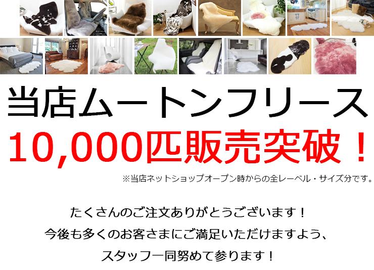 ムートンフリース10,000匹販売突破